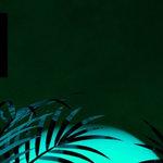 "David Guetta + Sia Release ""Flames"" Remixes EP"