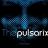 THE PULSARIX