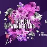 Tropical Wonderland Ibiza