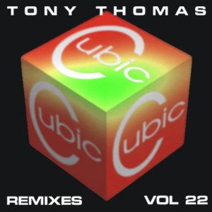 TT Remixes Volume 22