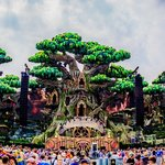 Stream official Tomorrowland 2016 sets from Tiësto, Armin van Buuren and more
