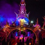 Symbiosis Gathering To Celebrate 10 Years Of Togetherness